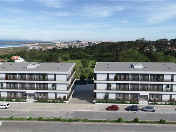 Apartment T3 / Vila do Conde, Árvore