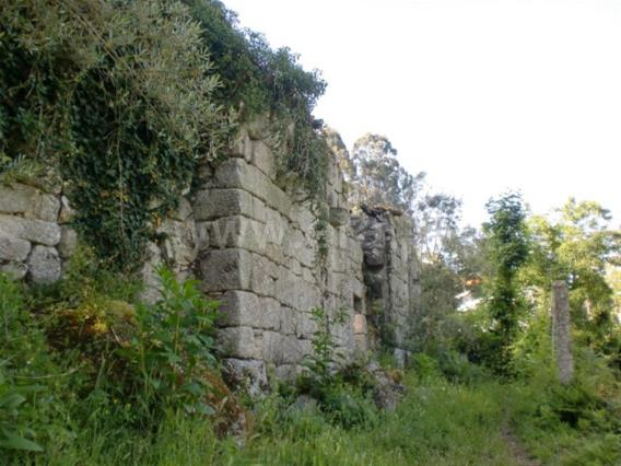 Plot with ruin / Fafe, Passos